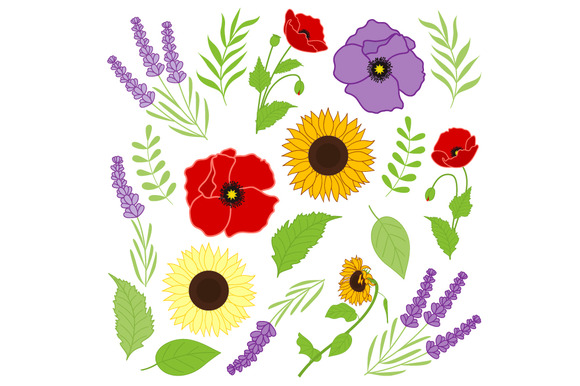 Provence Flowers