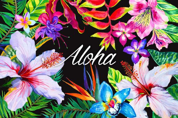 Aloha Tropical Flowers Kit