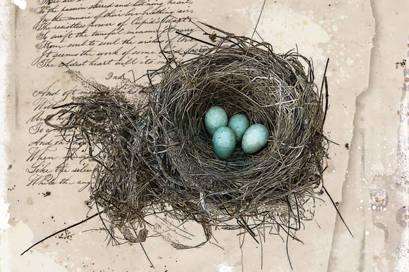 Robin S Nest Sepia Edition
