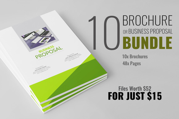 Brochure Or Business Proposal Bundle