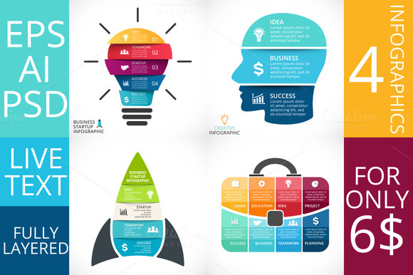 Business Project Infographics