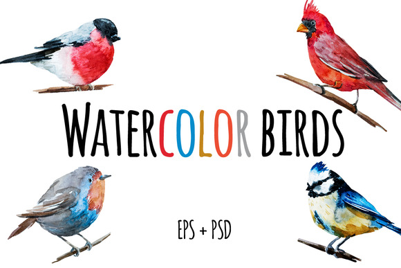 Nice Watercolor Birds