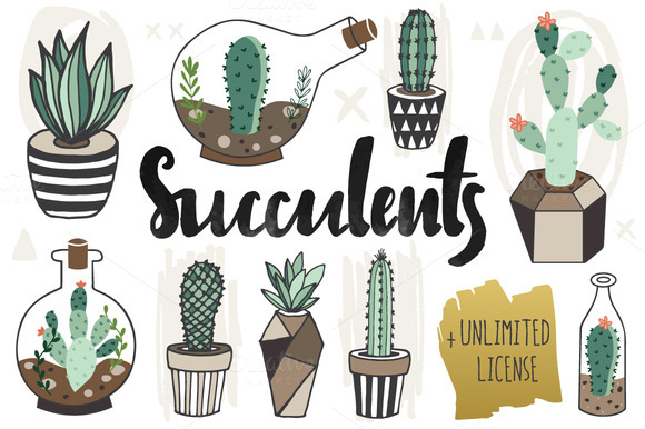 75%OFF Succulents Unlimited License