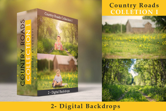 Country Roads Collection I