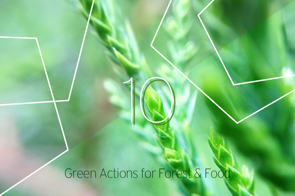 Green Actions For Forest Food