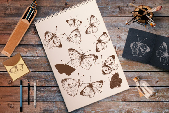 Butterfly Illustration Set