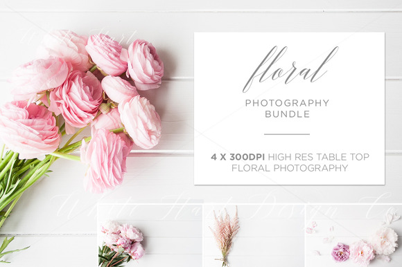 BUNDLE 4 X Table Top Floral Photos