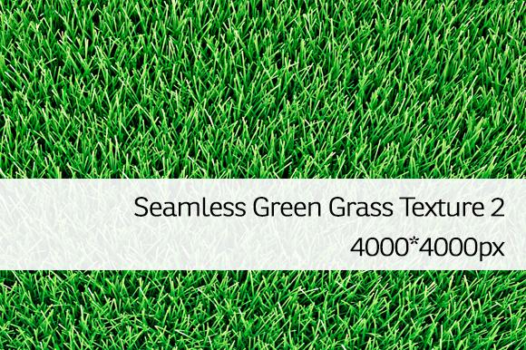 Seamless Green Grass Texture 2