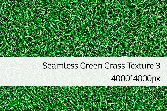 Seamless Green Grass Texture 3