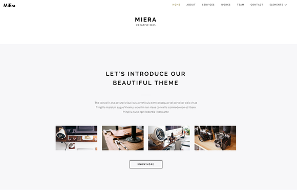 MIERA Responsive Parallax One Page
