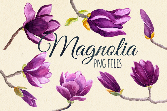 Watercolor Magnolia Flower Set