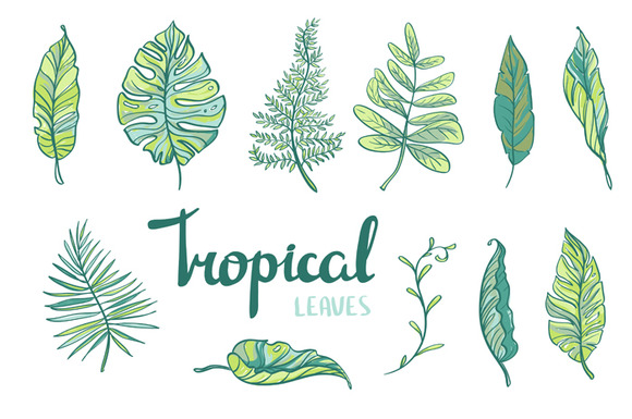 Summer Tropical Collection