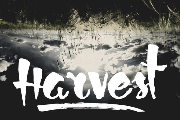 Harvest Typeface