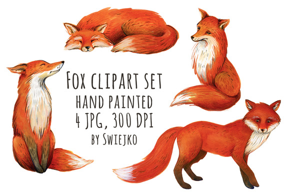 Fox Illustration Watercolor Clipart