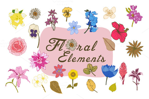 Vector Flower Elements 2 Cards