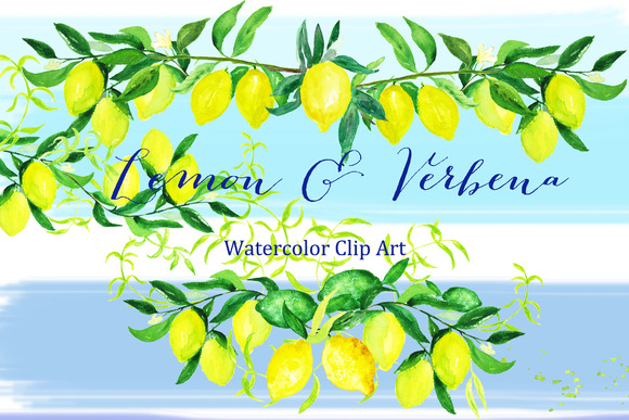 Lemon Verbena Watercolor Clipart