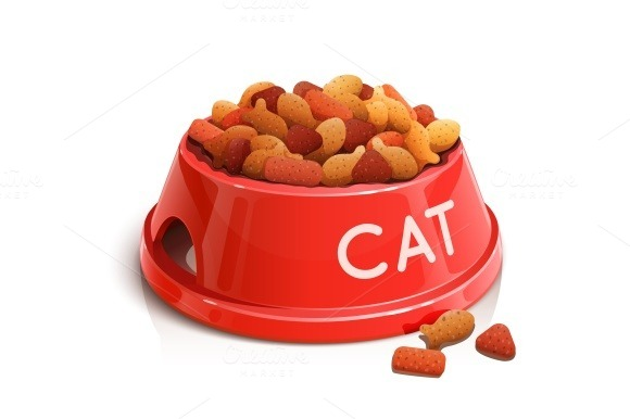 Bowl With Cat Feed