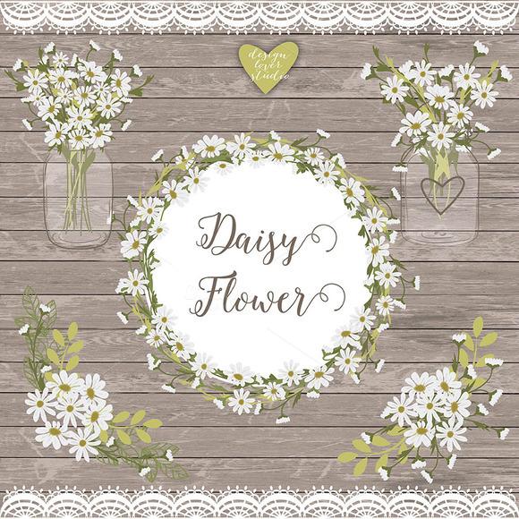 Vector Daisy Flowers Cliparts