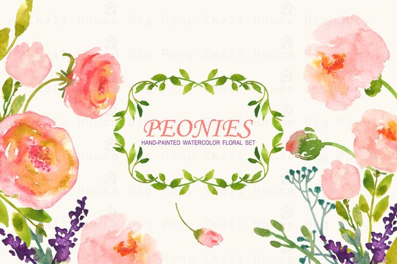 Peonies- Watercolor Clip Art Set