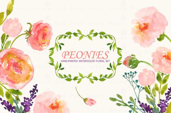 Peonies- Watercolor Clip Art Set