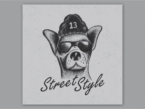 Chihuahua Street Style