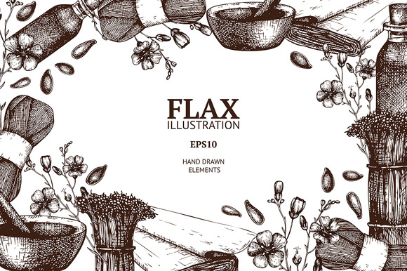 Vector Set Of Hand Drawn Flax Sketch