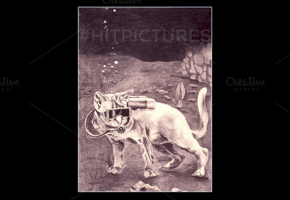 Cat Underwater Handmade Illustration