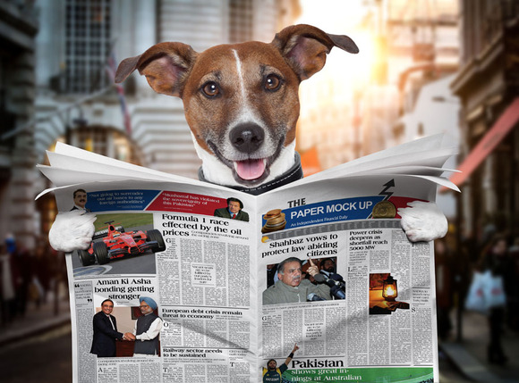 Dog Newspaper Mock Up