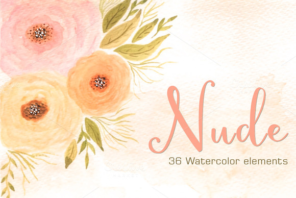 NUDE 36 Watercolor Floral Elements