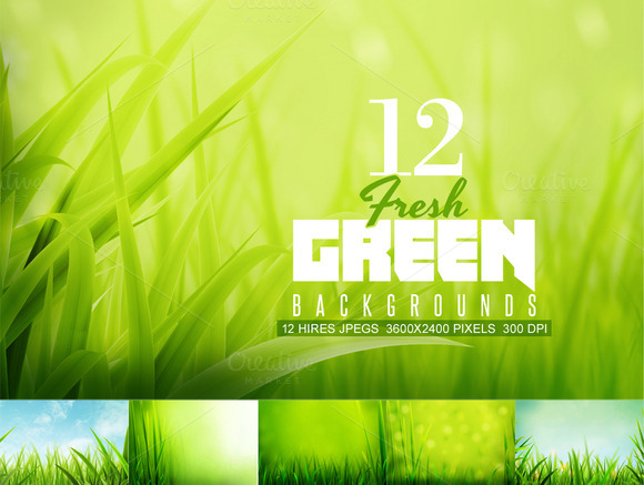 Fresh Green Summer Backgrounds