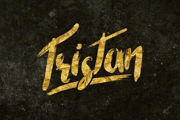 Tristan Brush Font Bonus