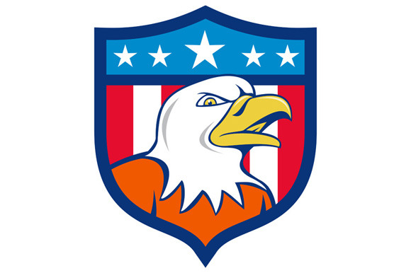 American Bald Eagle Head Angry Flag