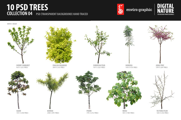 10 PSD Trees Collection 4