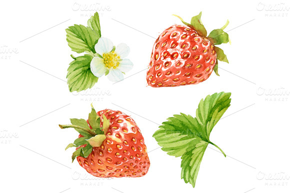 Set Of Watercolor Strawberry