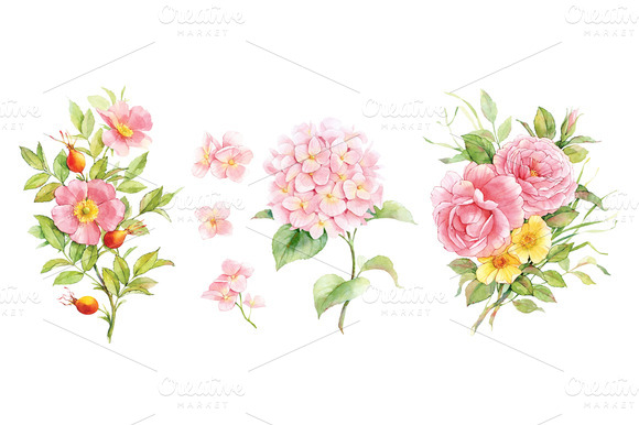 Set Of Watercolor Flowers