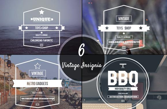 6 Vintage Insignia Logo