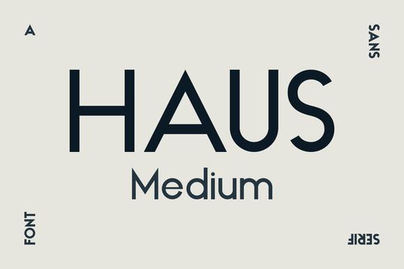HAUS Sans Medium