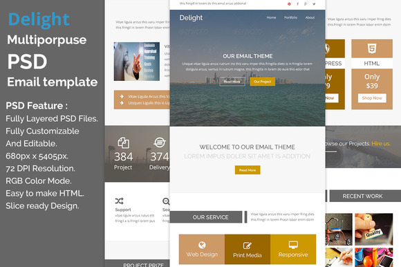 Delight PSD Email Template