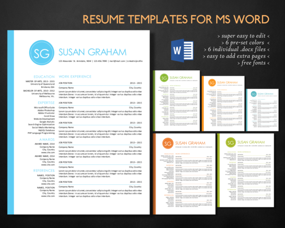 2 In 1 Left Bar Circle Word Resume