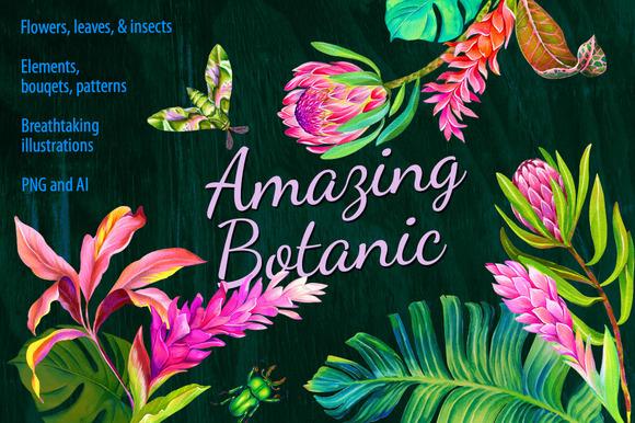 Amazing Botanic