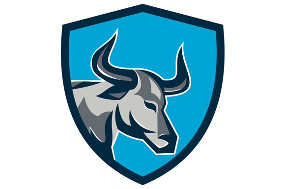 Texas Longhorn Bull Head Shield Retr