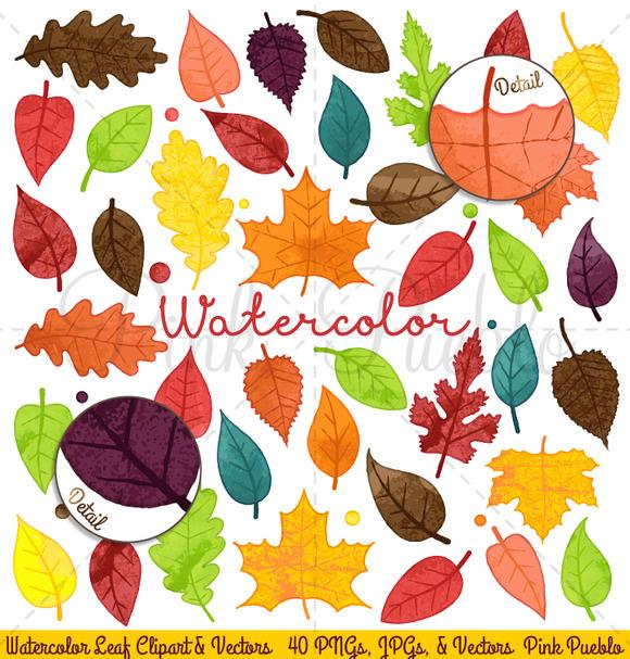 Watercolor Leaves Clipart Vectors