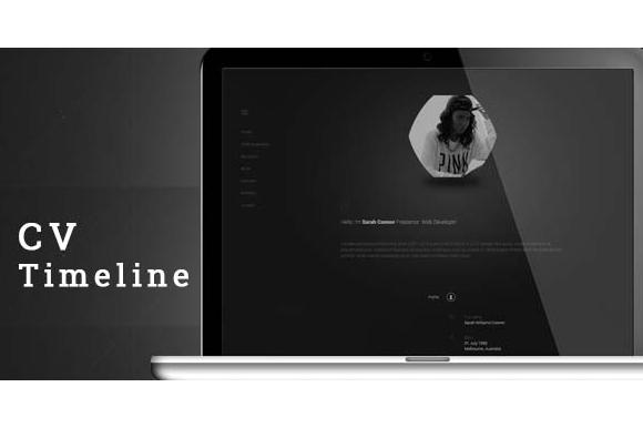 CV Timeline VCard Resume WordPress