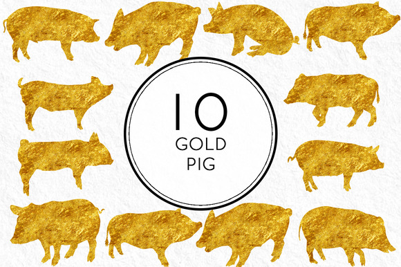 Gold Pigs