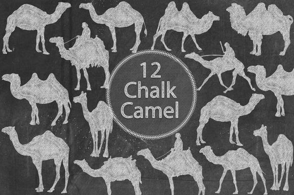 Chalk Camel