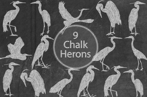Chalk Herons