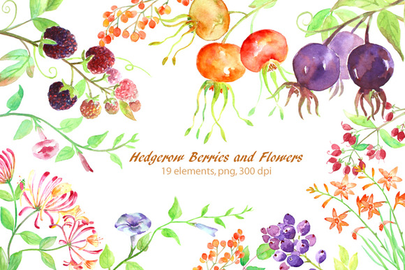 Watercolor Hedgerow Clipart