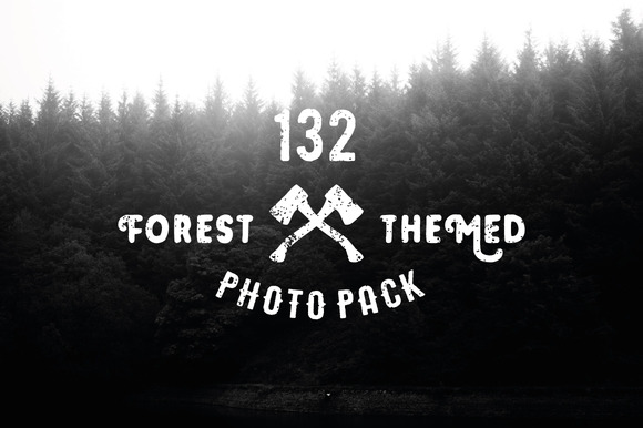 132 Forest Themed Photos