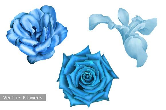 Blue Flowers Iris Camellia Rose