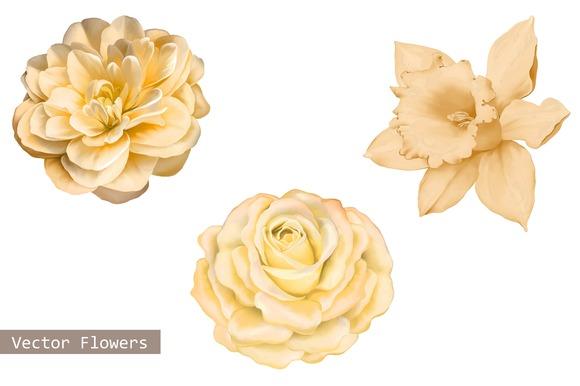 Yellow Camellia Rose Daffodil